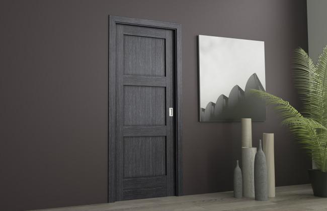 Puerta interior madera de olmo negro